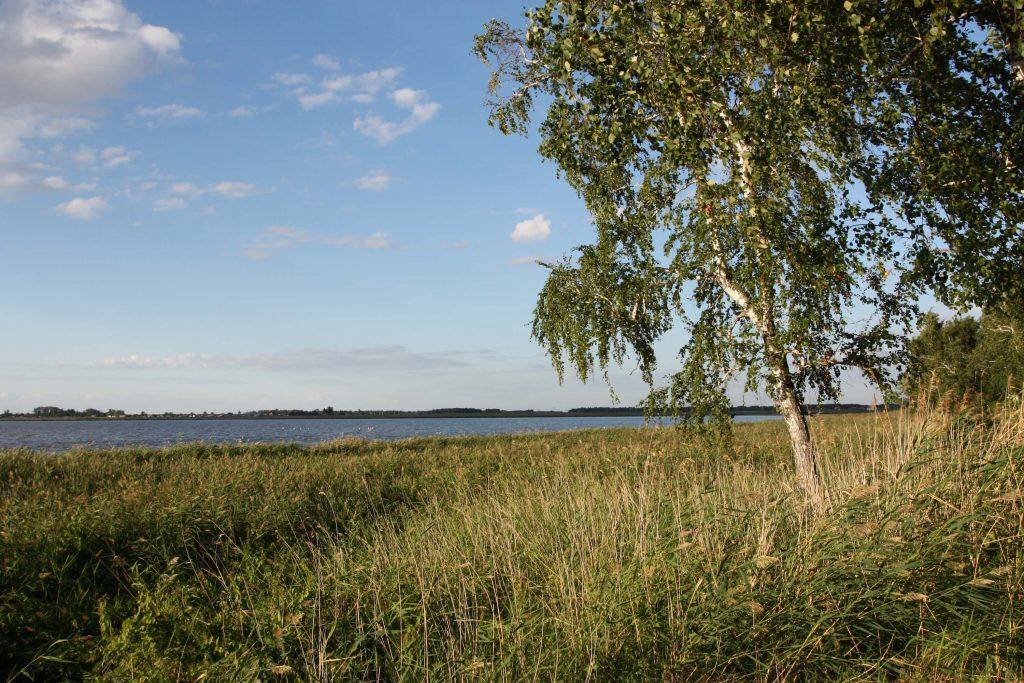 озеро карачи природа россия санаторий карачи