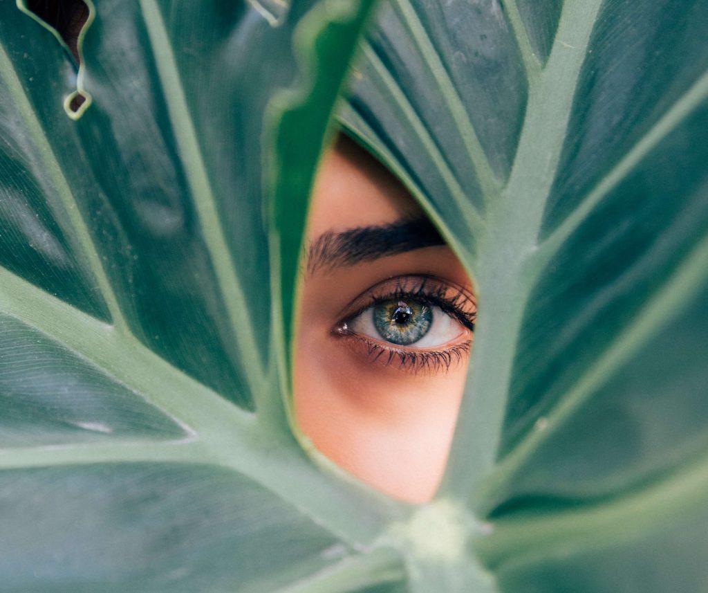 глаз, биобилдинг